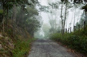 foggy-road-writing-prompt